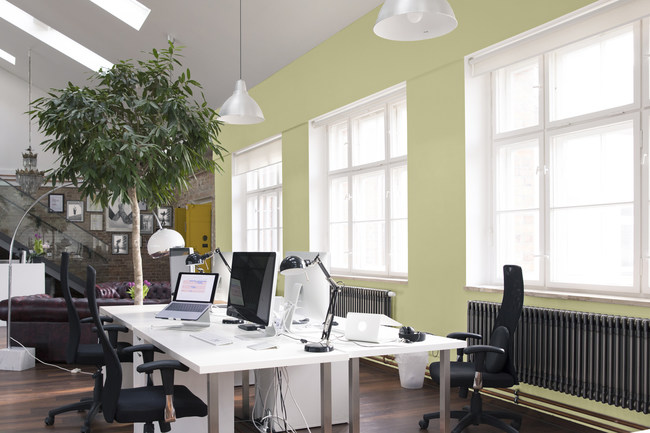 Back To Nature is a restorative color that's perfect for both home and commercial office spaces.