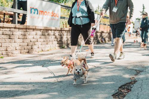 Le Rendez-vous Mondou - Festival canin aura lieu les 17 et 18 août prochains de 9 h à 17 h au Centre de la nature de Laval. Un événement familial incontournable pour tous les amoureux des chiens, en présence d'Annie-Soleil Proteau, ambassadrice de ce grand rassemblement canin. (Groupe CNW/Mondou)