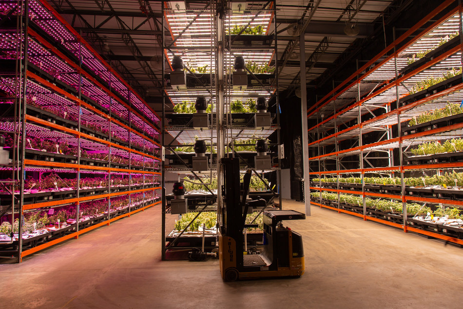 Tampa Cultivation Facility for Cansortium Inc (CNW Group/Cansortium Inc)