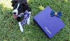 CUDDLY Debuts CBD Box For Pets And Their Parents