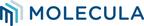 Molecula Wins Ventana Research's 2020 Digital Innovation Award -- Sweeps the Data Category