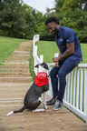 Mars Petcare, Three Area Shelters And Tennessee Titans Cornerback Logan Ryan Team Up To Tackle Pet Homelessness