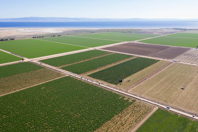 Primordia's hemp operation, seen here, comprises over 10,000 acres of legacy farmland and infrastructure ideal for hemp cultivation in the Imperial Valley of California.  With state of the art extraction technology and a 365-day cultivation window, Primordia aims to be the premier industrial hemp operation in the United States.