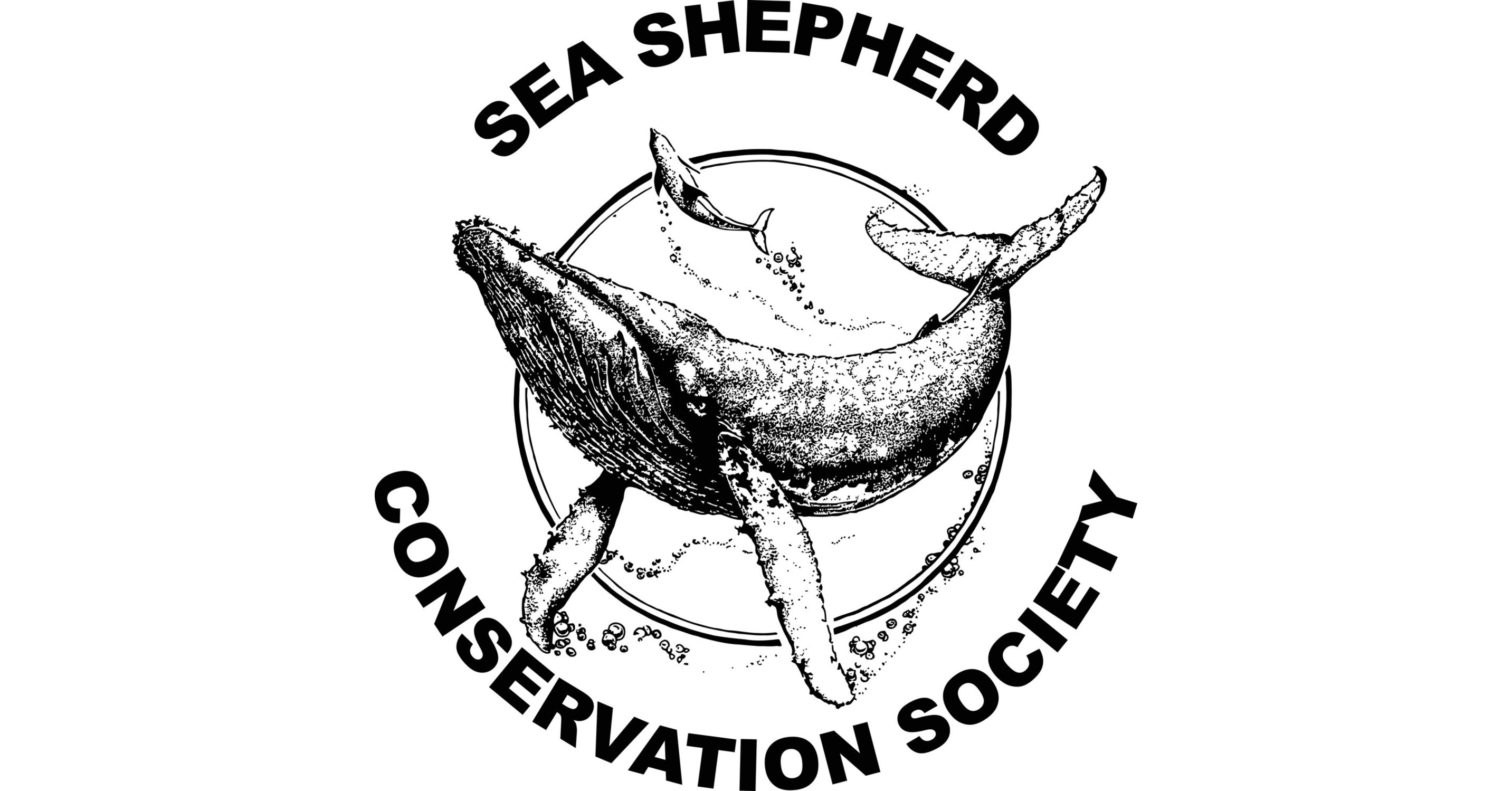 Sea Shepherd's Recommendations Taken Seriously at CITES CoP 18
