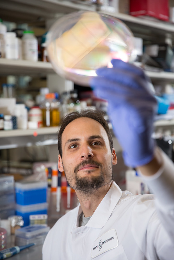 Wyss Institute researchers Jonathan Scheiman (shown here) and George Church developed the concept that the intestinal microbiome of elite athletes harbors higher number of specific bacteria that can assist with their performances and lead to the development of highly-validated probiotics. Credit: Wyss Institute at Harvard University