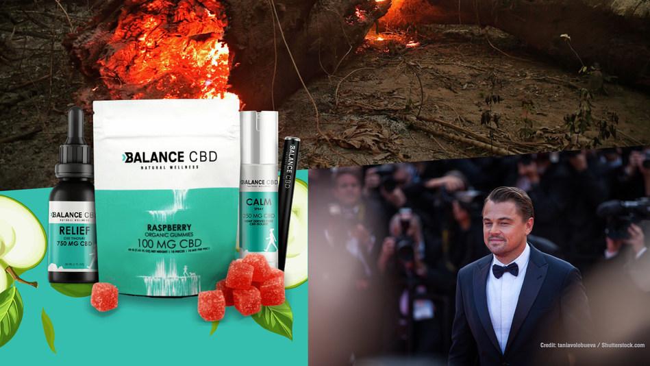 Leonardo DiCaprio's Amazon Fund Boosted By Balance CBD Profits