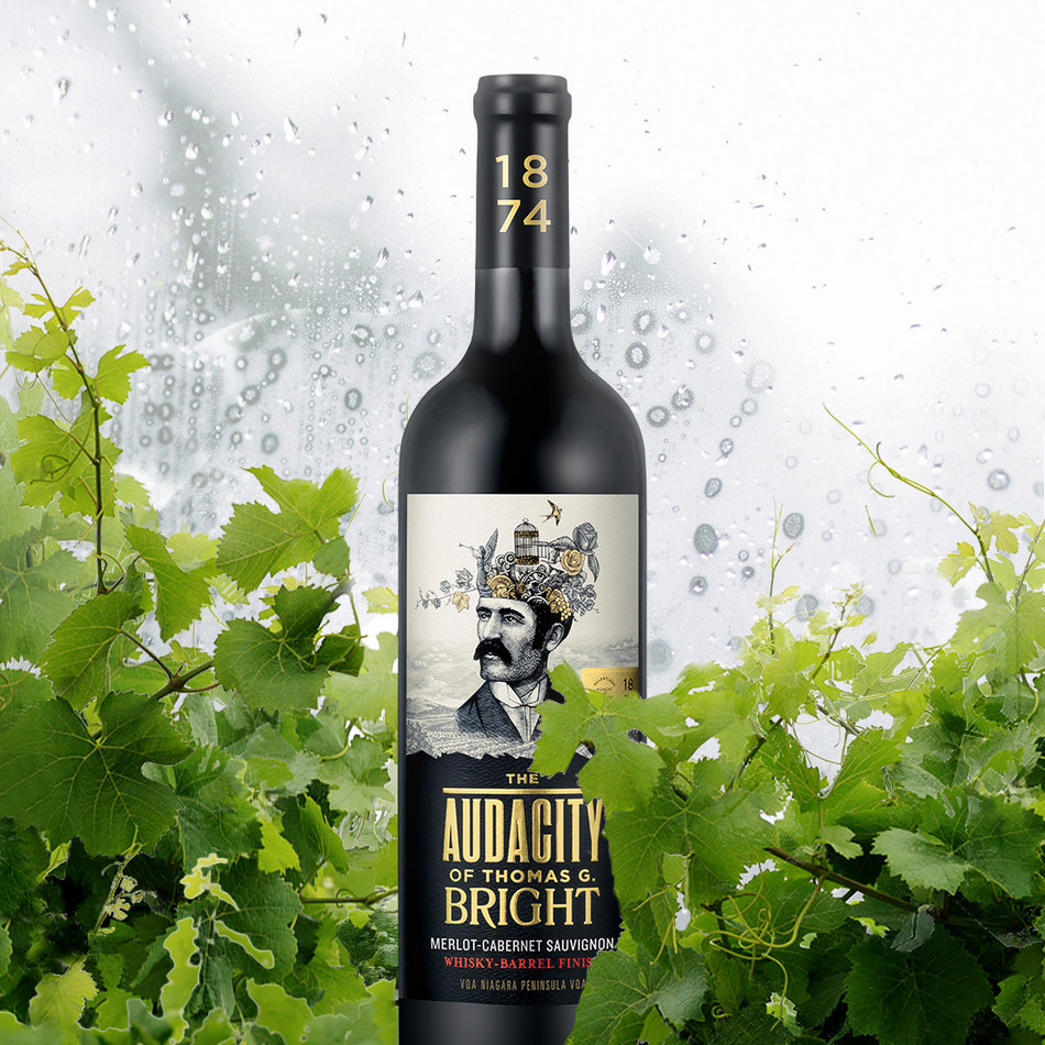 Arterra Wines Canada honours Niagara wine pioneer with the launch of The Audacity of Thomas G. Bright, a new VQA wine that's an ode to audacious explorers and mavericks. (CNW Group/Arterra Wines Canada)