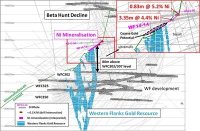 Figure 4 – Oblique view looking north highlighting position of nickel mineralization on the ultramafic/basalt contact directly above the Western Flanks resource model. Also highlighted is the potential for coarse gold mineralization associated with the nickel mineralization.  Drill intersections are downhole intervals. True thickness cannot be determined with available information. (CNW Group/RNC Minerals)