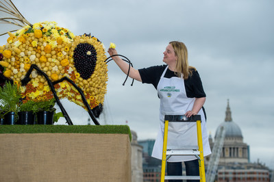 Food artist Prudence Staite puts the finishing touches to an  edible Bee sculpture, created by Yeo Valley to celebrate Organic September and International Organic Day, Southbank, London. PRESS  ASSOCIATION Photo. Picture date: Sunday September 22, 2019. The  unveiling of the bee shaped sculpture, which is covered in organic  produce aims to raise awareness of the importance of organic products  and benefits of organic farming. Photo credit: Anthony Upton/PA Wire