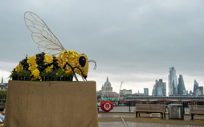 A giant, edible Bee sculpture, created by Yeo Valley to celebrate Organic  September and International Organic Day, Southbank, London. PRESS  ASSOCIATION Photo. Picture date: Sunday September 22, 2019. The  unveiling of the bee shaped sculpture, which is covered in organic  produce aims to raise awareness of the importance of organic products  and benefits of organic farming. Photo credit: Anthony Upton/PA Wire